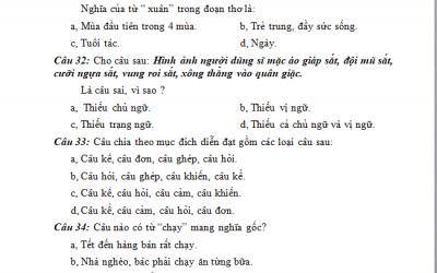 100 câu hỏi bồi dưỡng học sinh giỏi môn tiếng Việt lớp 5