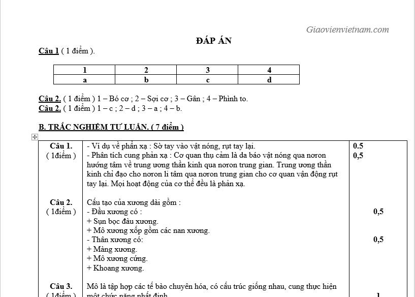 Bộ Đề Kiểm Tra Giữa Học Kỳ 1 Sinh 8 p2